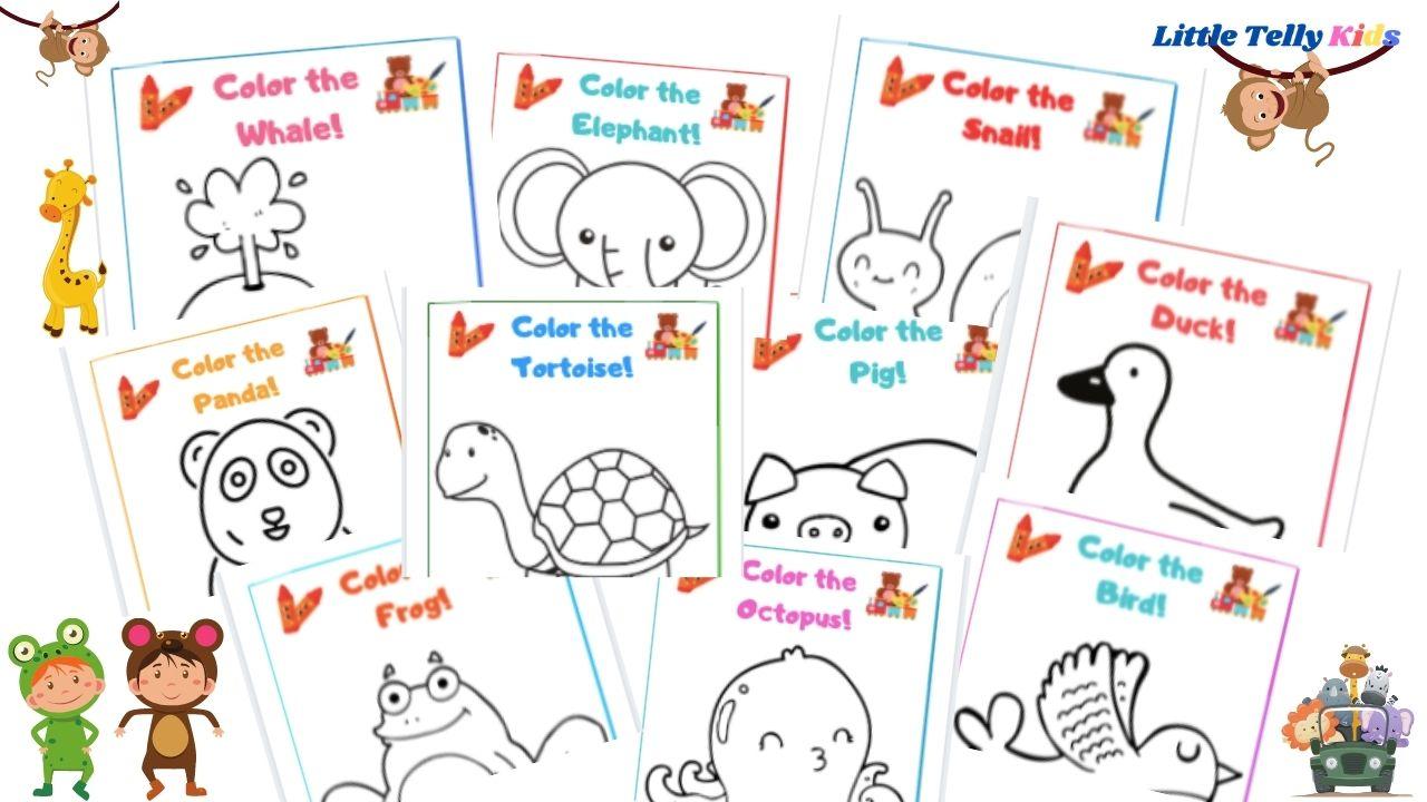 Animal Color Worksheets