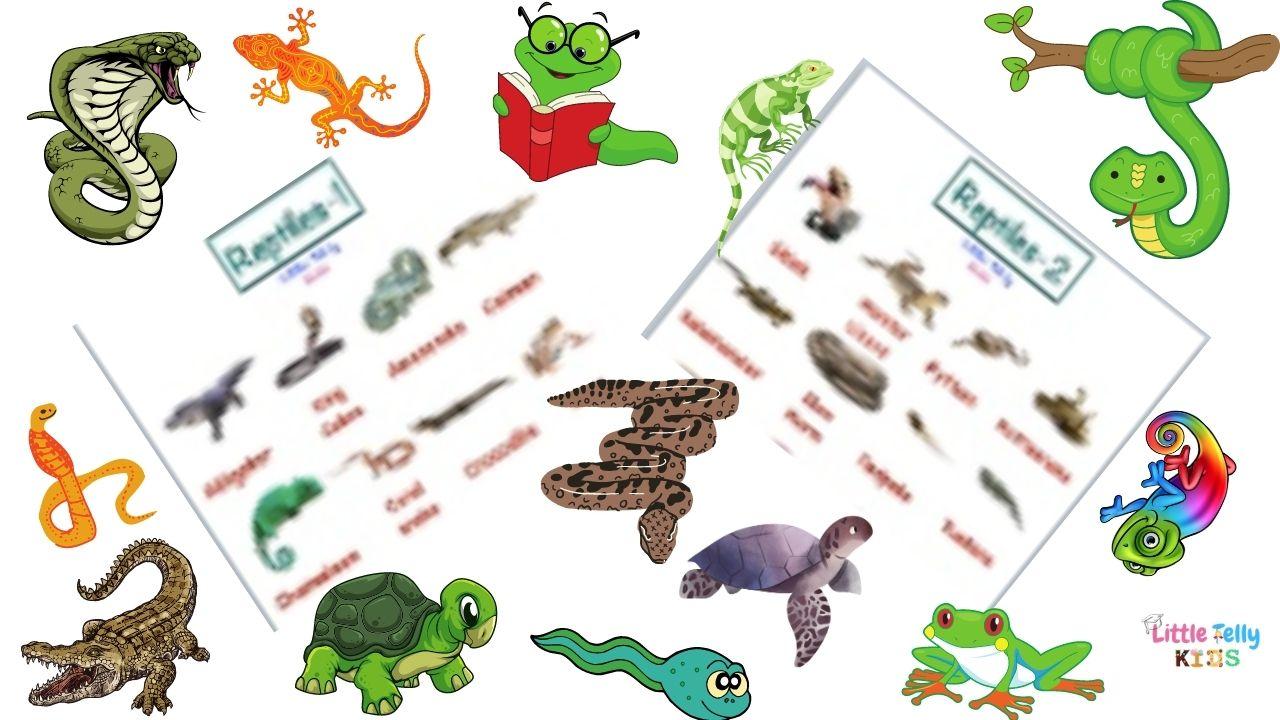 Reptiles Chart