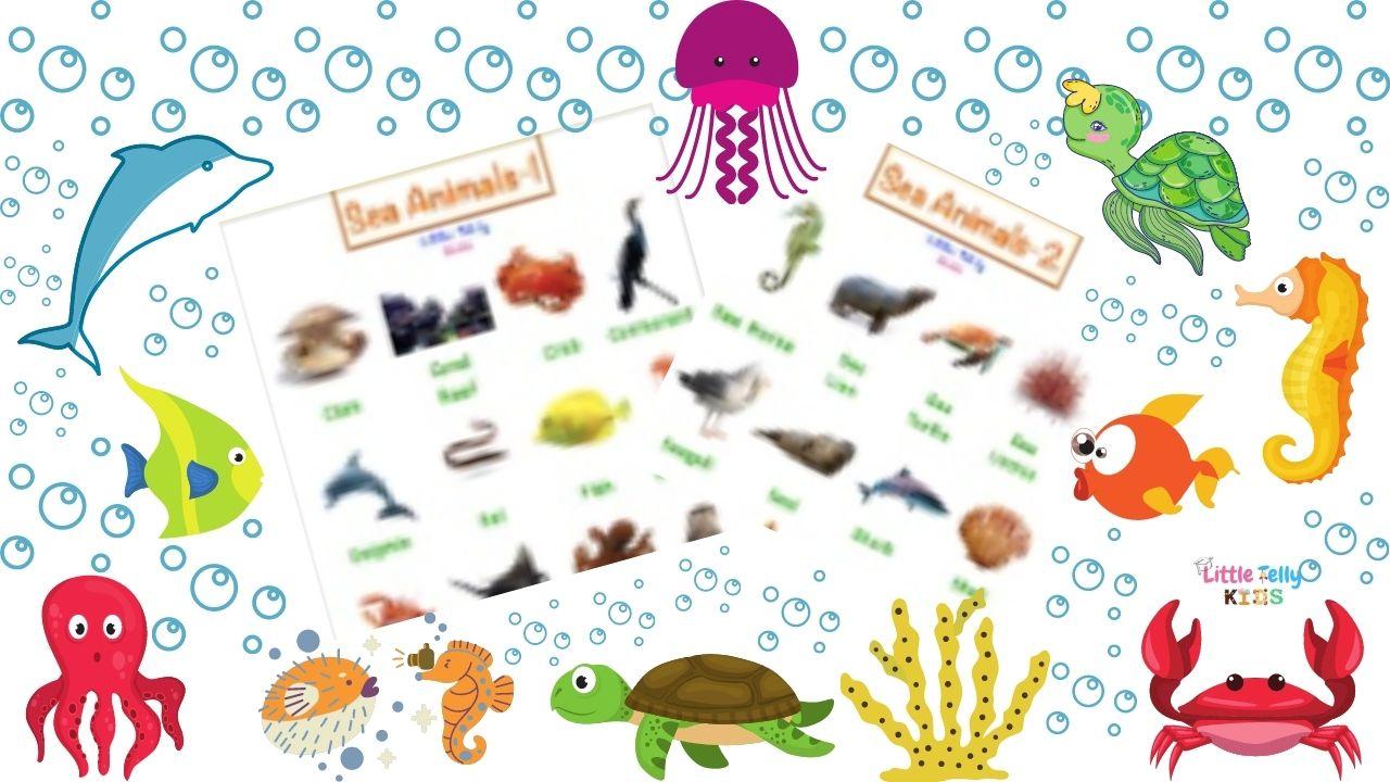 Sea Animals Charts